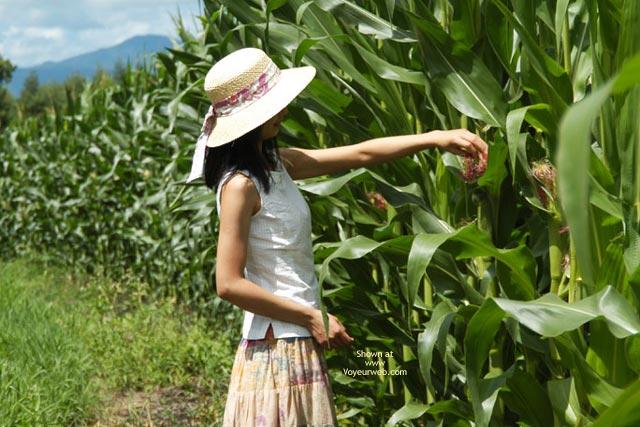 Pic #2 - Satomi At Corn Field