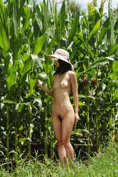 Pic #5 - Satomi At Corn Field