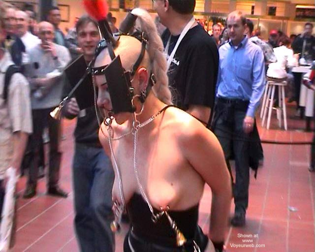 Pic #7 - German Erotic Fair Venus 52
