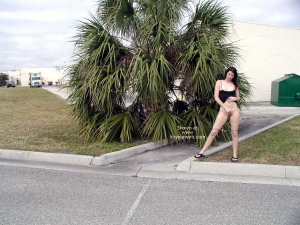 Pic #9 - More in The Parking Lot