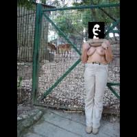 P&P Zoo Lisboa