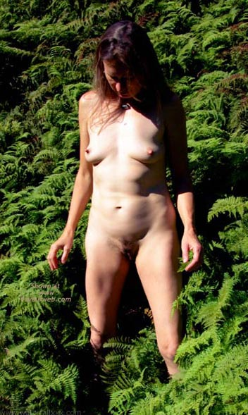Pic #1 - Amongst The Ferns