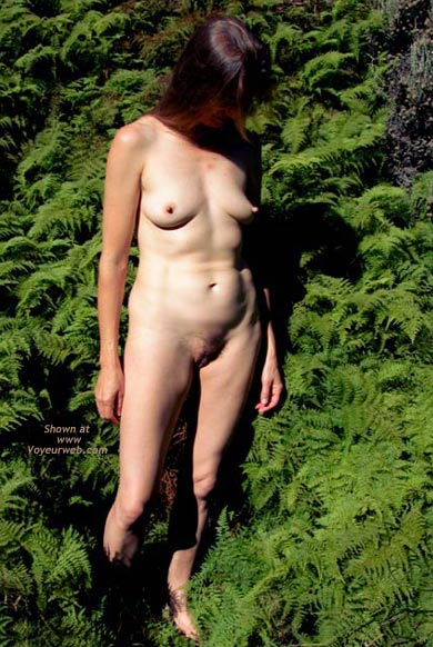 Pic #2 - Amongst The Ferns