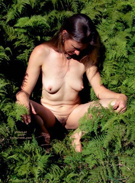 Pic #5 - Amongst The Ferns