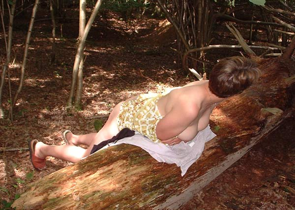 Pic #4 - Anon Wife UK Into The Woods