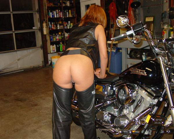 Pic #1 - Taz in Leather