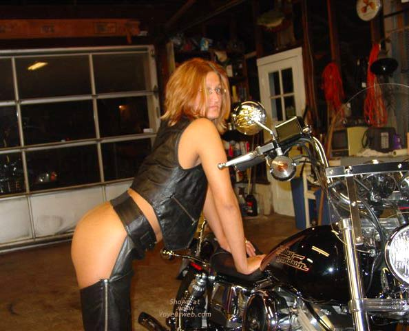 Pic #3 - Taz in Leather
