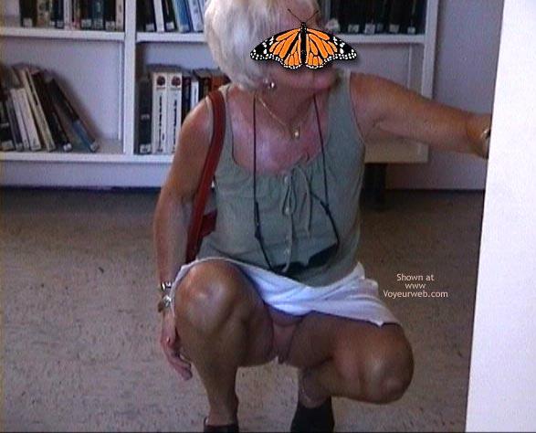 Pic #1 - Papillon Française