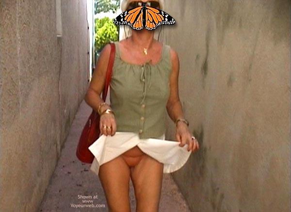 Pic #5 - Papillon Française