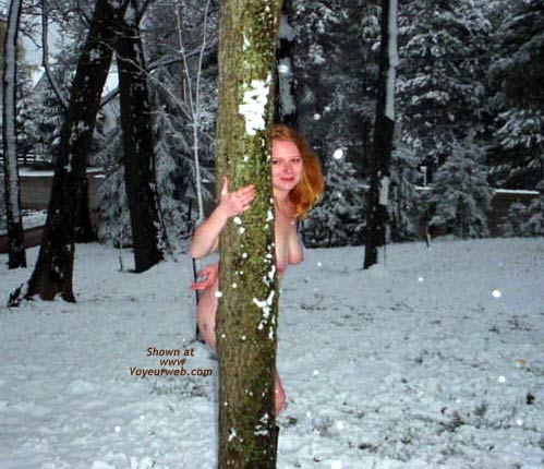 Pic #3 - CrazyCatie Last Snowfall in Wis.