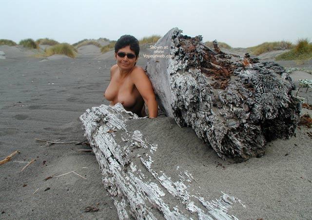 Pic #3 - The Lost Coast