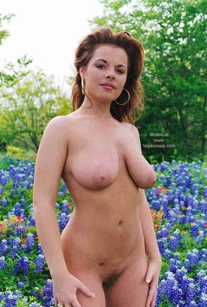 Pic #7 - A Texas Bluebonnett