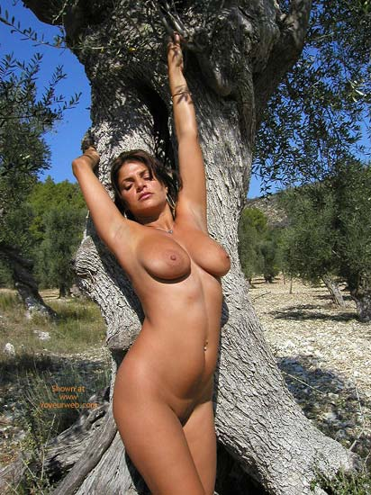 Pic #7 - Vanessa In The Olive Grove