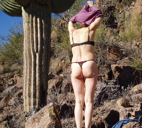 Pic #1 - Desert Mirage