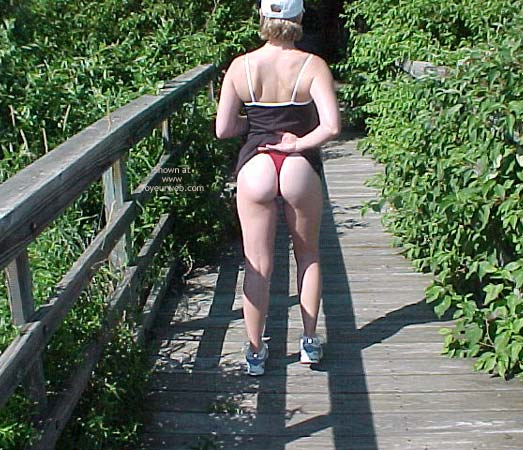 Pic #3 - Daisy On The Boardwalk