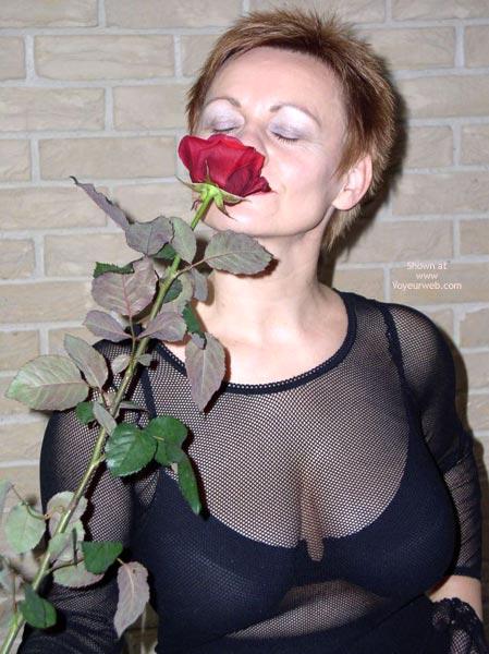 Pic #3 - Maria Red Rose 1