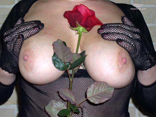 Pic #6 - Maria Red Rose 2
