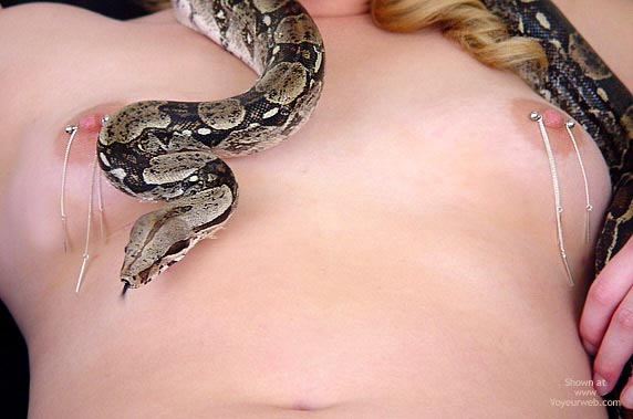 Pic #5 - Misty Snake And Tattoo