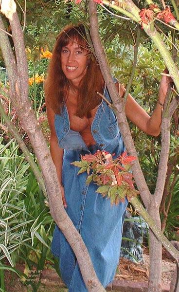 Pic #1 - Garden