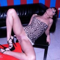 Leopard Dress...
