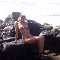 Savannah On Rocks 1