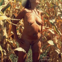 Midwest Country Girl in The Corn Field