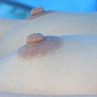 Perfect Erect Nipples