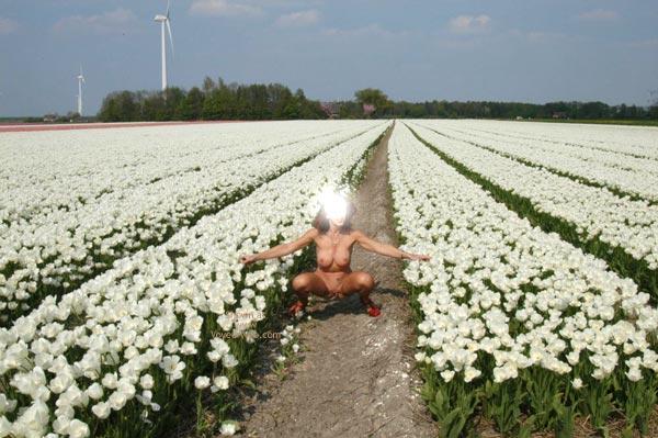 Pic #10 - Flowerfields 1