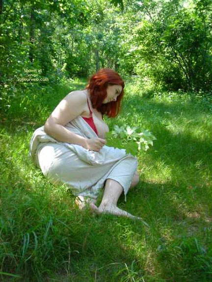 Pic #4 - Day In The Forest