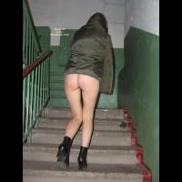 Siberienne Escalier De Mon Immeuble Suite