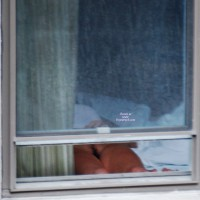 Motel Window And Thong At The Zoo.