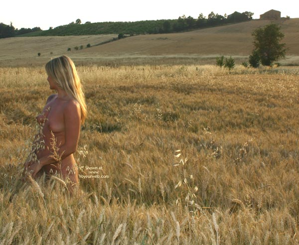 Pic #1 - Elise In A Golded Wheat Field