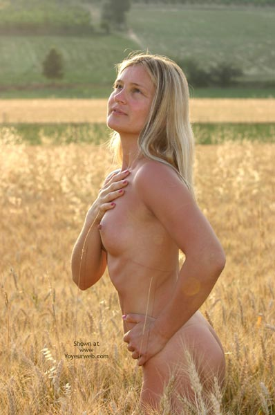 Pic #4 - Elise In A Golded Wheat Field