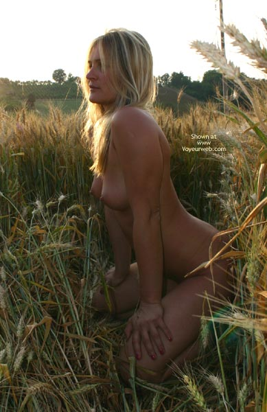 Pic #7 - Elise In A Golded Wheat Field