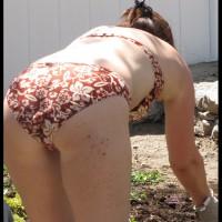 *PL Eva Gardening