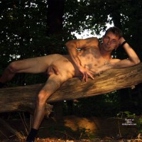 M* Man In The Wood
