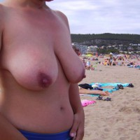 Spain 2009 - Great Tits