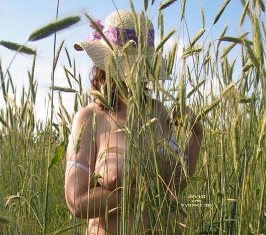 Pic #1 - Crean 'N Wheat
