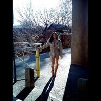 *Co Mg'S Cold Walk Through The Park