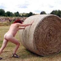 *PL Farmer's Field