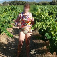 Fred In A Vineyard