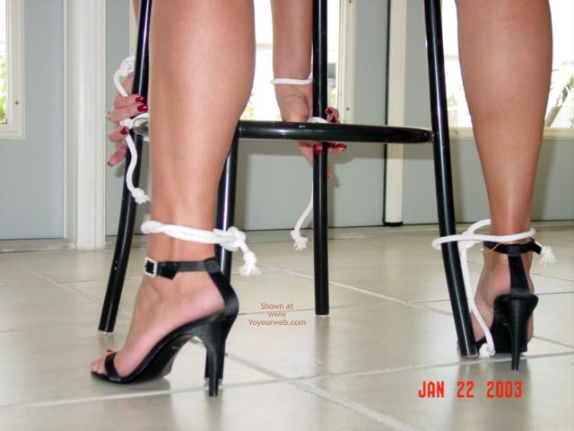 Pic #1 - Bound To Please