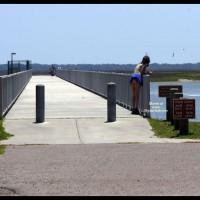 Beach Voyeur:Beach Comber