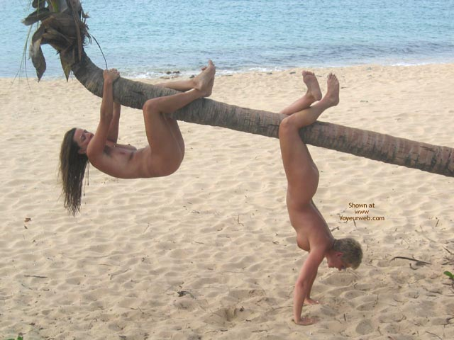 Pic #1 - Hanging On Palm Tree , Hanging On Palm Tree, Two Nudes, Nude At Beach, Hanging By A Palm Tree, Naked Girls On A Beach, Monkey See, Girl On Tree
