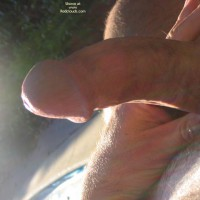 M* Cock In The Sunshine