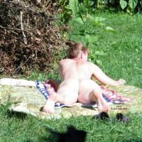 Sunny Day In The Garden 2