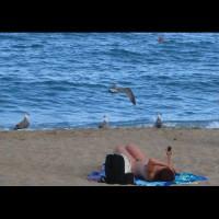 Beach Voyeur:*NW Beach Voyeur: Beach Scenes 5