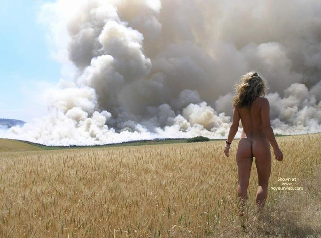 Pic #1 - Fire In The Field , Fire In The Field, Woman Nature, Outdoors Walking Away, Perfect Ass, Blonde In Wheat Field, Blonde Watching Smoke