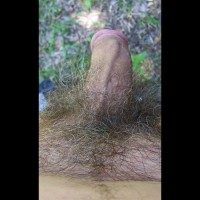 Hard Cock In Yard