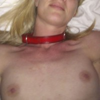 Norwegian Wife